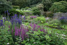 Coleton Fishacre Garden, Devon