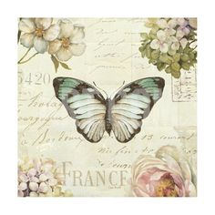 Marche de Fleurs Butterfly II Giclee Print by Lisa Audit at Art.com