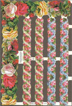 Vintage Floral Borders ~ Picasa Albums Web