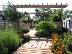 The custom planter boxes and trellises were designed for the extremes of Midwestern heat and cold. They accommodate tough plants that flourish despite the harsh conditions. Drip irrigation keeps the plants fresh all summer. Insulation inside the planters helps reduce damage from the freeze- thaw cycle.