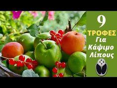 Ανακαλύψτε τις 20 καλύτερες τροφές χωρίς θερμίδες για να απολαμβάνετε χωρίς ενοχές τα γεύματα σας και να πετύχετε τους στόχους σας εύκολα και υγιεινά. Greek Cooking, Diet Recipes, Health Fitness, Vegetables, Videos, Food, Vegetable Recipes, Eten, Veggie Food