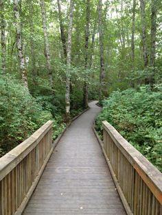 Clear Creek , Silverdale, WA - Washington | AllTrails.com