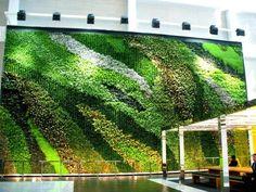 http://decorationgardens.com/amazing-green-wall-gardens/
