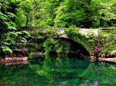 Castelnovo del Friuli (PN) — con Gemma Greg