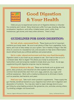 Guidelines For Good Digestion and the Relationship to Health, by www.aunaturalenutrition.com