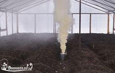 ТЛЯ БОЛЬШЕ НЕ ПОБЕСПОКОИТ    В теплице  Берёте жестяную банку (из-под селёдки или другую), проделываете в дне отверстия. Из щепочек разжигаете внутри банки небольшой костёр. Как только он разгорится — засыпаете огонь табачной пылью. Сразу начинает валить белый дым.    Иногда тлей трудно заметить, поскольку они принимают окраску тех частей растений, на которых находятся их яйцевидные тела: выпуклые со стороны спинки, покрытые мягкими восковыми выделениями в виде пыльцы или нежного пушка…