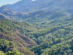 "Zona del merendero ""La Limerica"", al fondo la urbanizacion de Cabrera. Grand Canyon, Outdoors, River, Nature, Vacation Places, Real Estate, Calla Lilies, Naturaleza, Grand Canyon National Park"