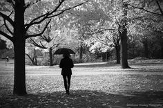 My on-going umbrella series. Debralee wiseberg  500px  Follow your own path