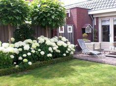 Inspiring Small Garden Design Ideas 36