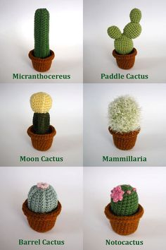 amigurumi amigurumi cactus Realistic crocheted cacti and Crochet Amigurumi, Amigurumi Patterns, Knitting Patterns, Amigurumi Doll, Crochet Home, Love Crochet, Diy Crochet, Crochet Ideas, Arts And Crafts