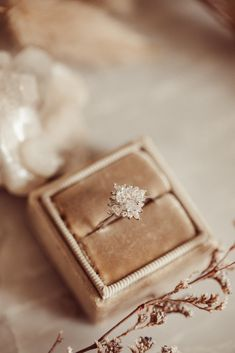 Wedding Goals, Dream Wedding, Wedding Day, Wedding Rings, Ringe Gold, Halo Setting, Dream Engagement Rings, Oval Rings, Monogram Wedding