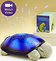 Twilight Turtle