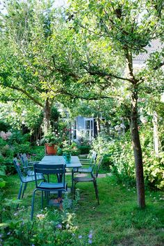 Lovely garden. These blue chairs and table...