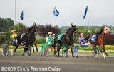harness racing | Harness Racing Entries and Results