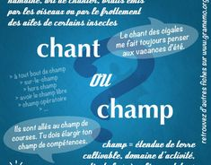Gramemo- Grammaire-Express - Gramemo How To Teach Grammar, Teaching Grammar, Teaching Tips, Les Homophones, French Expressions, French Language Learning, Montessori, Images, French Class