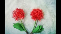 How To Make Haemanthus Multiflorus | Blood Lily Flower From Crepe Paper ...