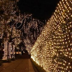EShing 6.6ft*9.8ft 210 LED Waterproof Net Mesh Fairy Lights Twinkle Lighting for Wall, Tree, Garden, Lawn, Patio, Wedding, Party, Indoor, Outdoor Decorations (Warm White)