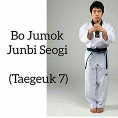 Taekwondo teory