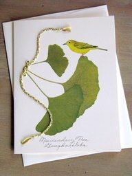 What a beautiful pressed Ginkgo leaf notecard! A fun idea to do with pressed Ginkgo leaves. Asian Cards, In Natura, Leaf Cards, Dry Leaf, Maidenhair Tree, Botanical Illustration, Leaf Design, Fabric Painting, Dried Flowers