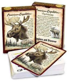 Moose Playing Cards at theBIGzoo.com, a toy store that has shipped over 1.2 million items.
