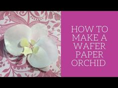 Wafer Paper Orchid - YouTube