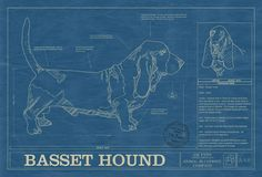 The Animal Blueprint Company makes over 43 different breeds as blueprints, featuring characteristics and idiosyncrasies of each breed. You can order the pr