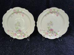 Homer Laughlin Virginia Rose Dinner Plate FLUFFY ROSE VR-128 9 1/4 in TWO NICE! #HomerLaughlin