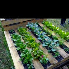 Use for pallets... Keeps weeding to a minimum.  GREAT idea!!