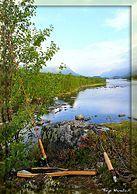 Make a Homemade Fishing Rod - wikiHow