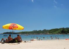 Me n the pets would live near Clearwater Bay Beach, Hong Kong Hong Kong Beaches, Dream Land, Passport, Stamps, Fair Grounds, Money, Live, Pets, Places