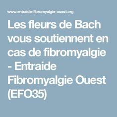 Les fleurs de Bach vous soutiennent en cas de fibromyalgie - Entraide Fibromyalgie Ouest (EFO35)