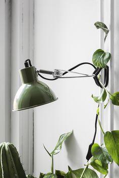 granit for ever. Green Interior Design, Interior Plants, Desk Lamp, Table Lamp, Lampe Spot, Tube Acier, Ikea, Scandi Home, Night At The Museum