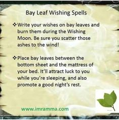 Leaf Spells I have an email @ healingcomplexptsd@ I do have a lot of emails every day, so there may be a delay in my response. **Please note, I am not a mental health professional, so I cannot and d… Achetez le design « Pleine lune de 2018 Hoodoo Spells, Magick Spells, Wicca Witchcraft, Wiccan Witch, Luck Spells, Money Spells, Easy Spells, Tarot, Herbs