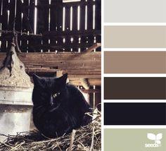 {creature color} image via: @designseeds