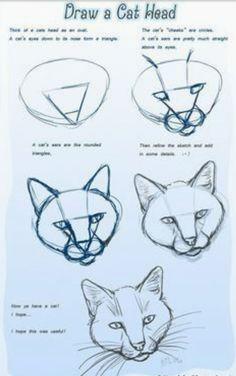 Animal Sketches, Art Drawings Sketches, Animal Drawings, Easy Drawings, Pencil Drawings, Drawings Of Cats, Illustration Sketches, Illustrations, Cat Drawing Tutorial
