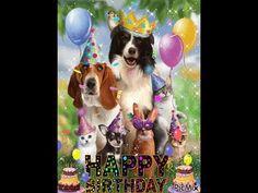 Birthday Wishes | #Funny Birthday Wishes Video|#happy birthday Wishes - YouTube Happy Birthday Status, Funny Birthday, Birthday Wishes, Youtube, Painting, Instagram, Birthday Fun, Special Birthday Wishes, Anniversary Funny