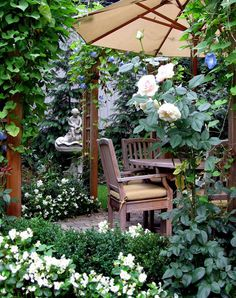 * boxwood, roses, and morning glories. very sweet space.