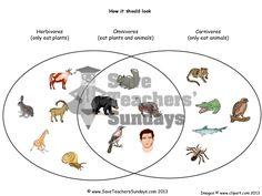 Venn diagram on carnivores omnivores and herbivores worksheetpdf preview of lesson 1b venn diagram on carnivores omnivores and herbivores ccuart Choice Image