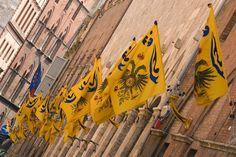 """.: El Palio di Siena / Contrada del Aguila """"giallo"""""""