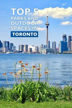 Awesome Incredbly Top 5 Parks and Outdoor Spaces in Toronto Ontario Travel, Toronto Travel, Ontario Place, Canada Destinations, Canadian Travel, Living At Home, Australia Travel, Outdoor Spaces, Travel Inspiration