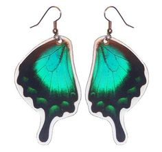 Real Green Butterfly Earrings  Papilio by AsanaNaturalArts on Etsy, $10.00