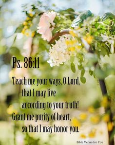 Teach me your way, Yahweh. I will walk in your truth. Make my heart undivided to fear your name. -- Psalm 86:11