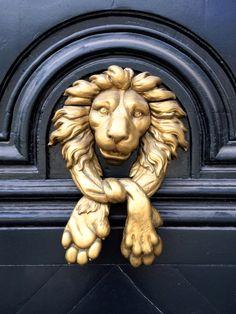 A different take on a lion door knocker #doorknockers