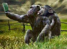 """Animal selfie:)) <a href=""""http://musapg.catspray.hop.clickbank.net/""""><img src=""""http://www.catsprayingnomore.com/images/banners/standard/ad3.jpg"""" border=""""0"""" alt=""""Cat Spraying No More"""" /></a>"""