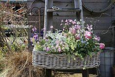 葉っぱのリースの画像 | フローラのガーデニング・園芸作業日記