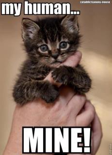 My human....Mine!