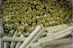 Wow #weed#marijuana #cannabis #blunts #bongs #ganja #420 #stoner #herb #joints #herb #plants #hemp #haze #hash #smoke #smoking #high