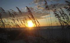 - St. Pete Beach FL