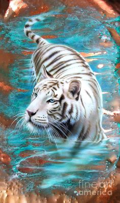 Copper White Tiger Painting Sandi Baker