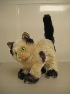 In my ETSY Shop: **Needs Love** ~ Steiff Vintage Gussy Cat ~ 1952 to 1969 ~ Scruffy but Sweet!!
